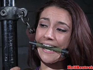 Masturbating bdsm submissive flogged hard
